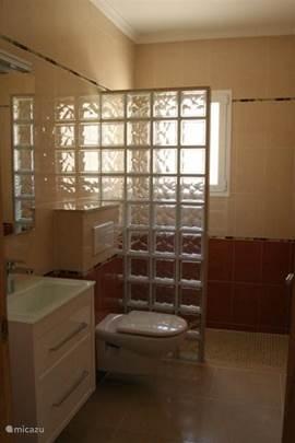 Badkamer met douche. Wastafel met opbergruimte. Toilet.