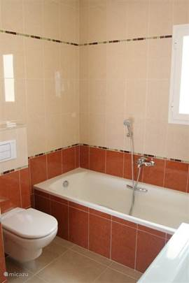 Grote badkamer met ligbad en aparte douche. Toilet. Brede wastafel met opbergruimte.