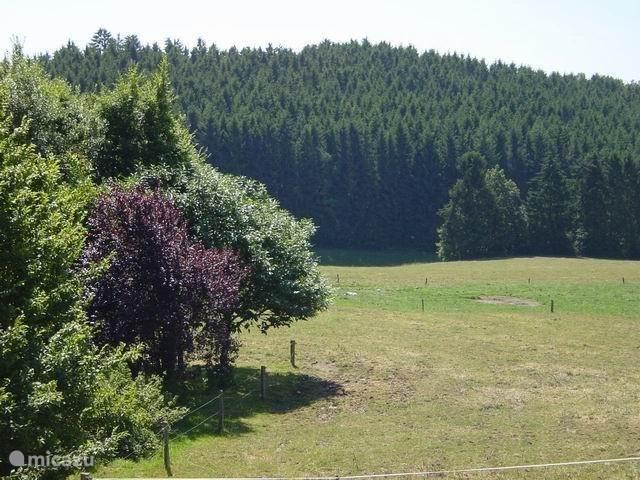 Ferienwohnung Belgien, Ardennen, La Roche-en-Ardenne Bauernhof La Luna Ardennen