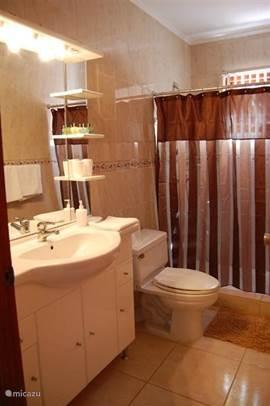Badkamer 1, toegankelijk via de hal.