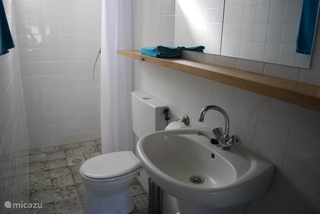 De eenvoudige badkamer met wastafel, toilet en douche.