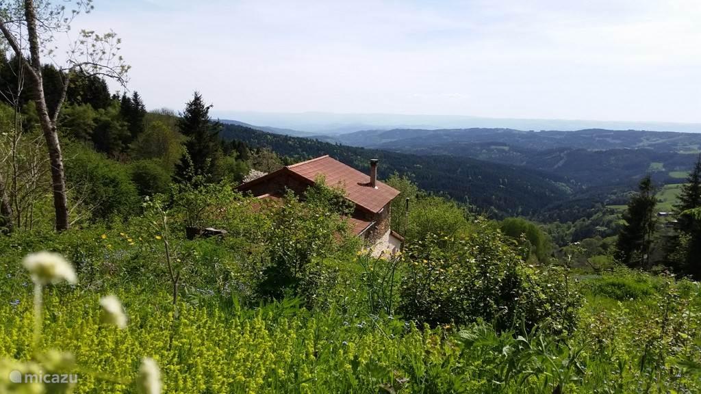 Onze gasten waarderen vooral de rust, de ruimte en de mooie natuur.