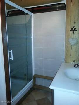 De badkamer op de begane grond met douche, wastafel en toilet.