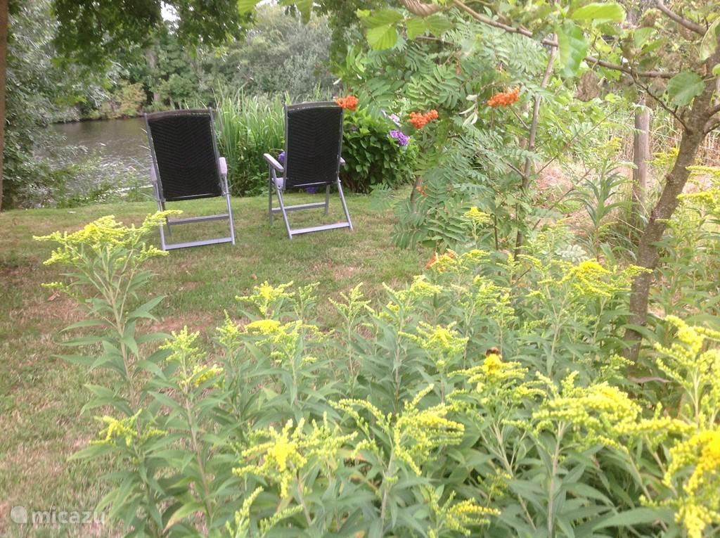 Zomers zitje naast het trekgat en onder de eikenboom.