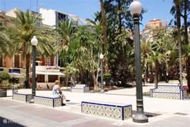 Elche is de palmenstad:in totaal 250.000 voor even zoveel inwoners. Hier is de Dame van Elche gevonden,een beeld van 4000 jaar oud