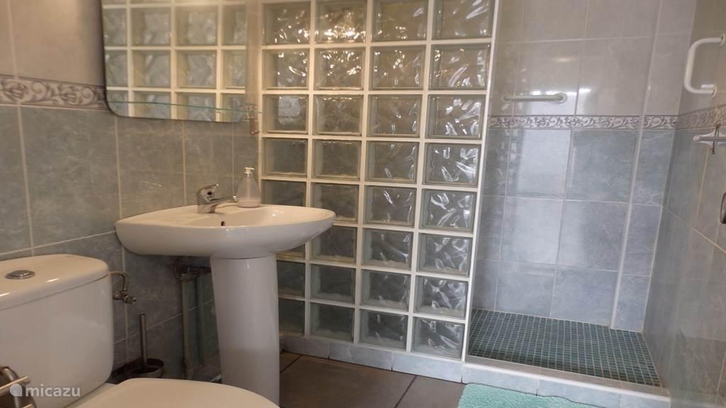 Badkamer met inloopdouche en toilet