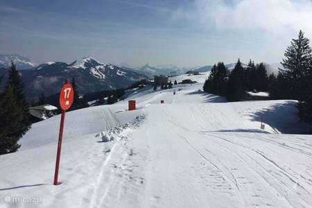 Information ski slopes and facilities - winter