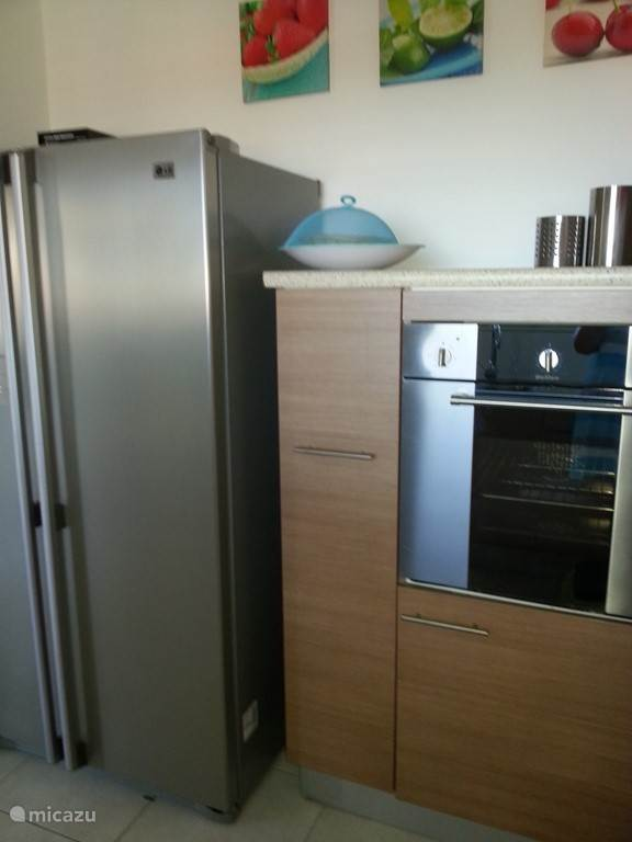 Oven and large American fridge