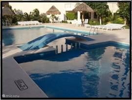 Salvia zwembad