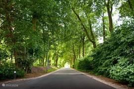 De Lange Zuiderweg, waaraan het rustige park 't Zuiderland gelegen is.