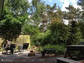 Het ruime terras op het zuiden, met veel privacy door de prachtige  omgeving, en veel zonlicht!