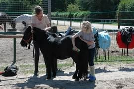 Vanuit de manege, gelegen op het park, kunnen buitenritten onder leiding gemaakt worden. Ook js er gelegenheid tot het stallen van paarden.