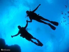 Duiken in de azuurblauwe zee