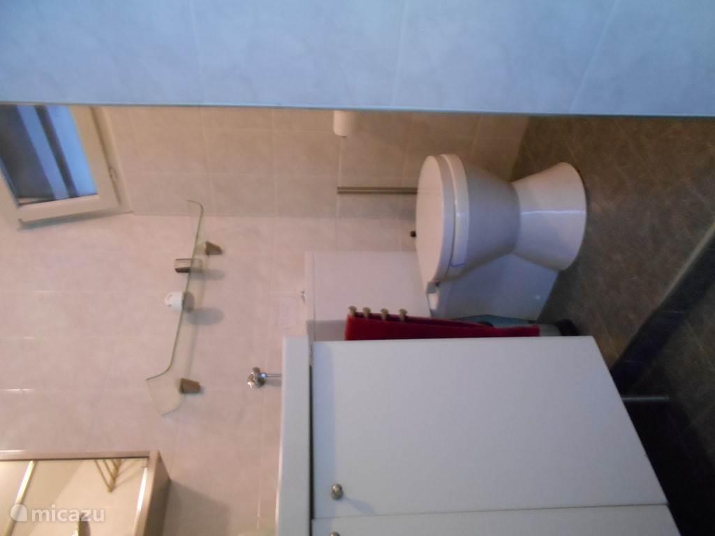 Dit is de wc en een deel van de wastafel in de badkamer.