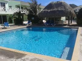 Het zwembad met palapa. Links op de achtergrond ons appartement.