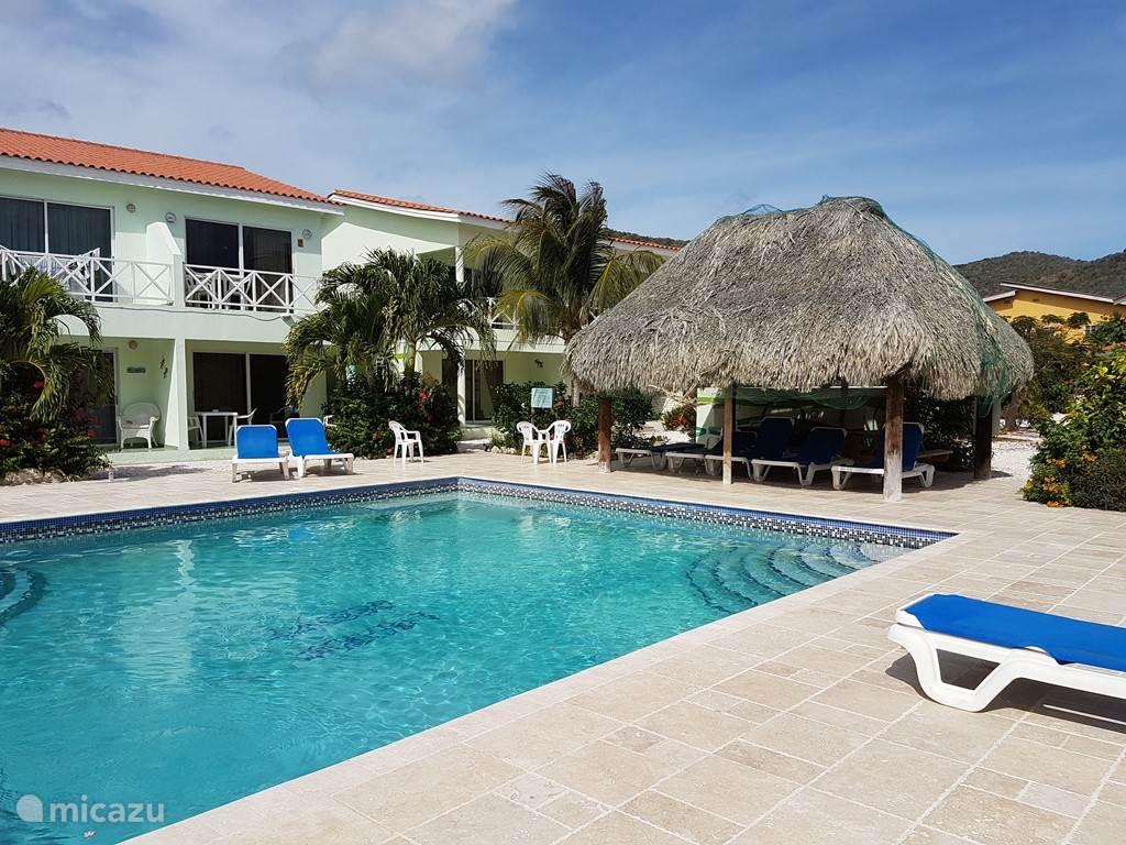 Zwembad met ligstoelen en palapa, grill area