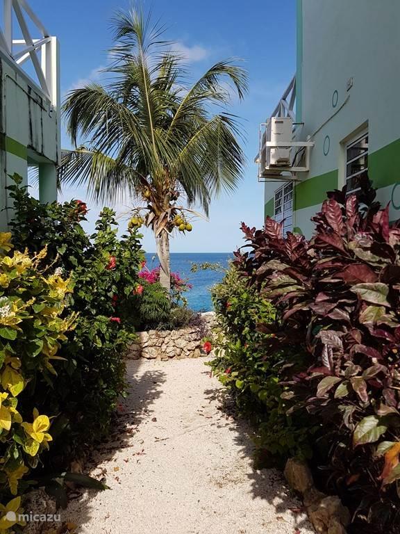 Uitzicht op Caribische Zee