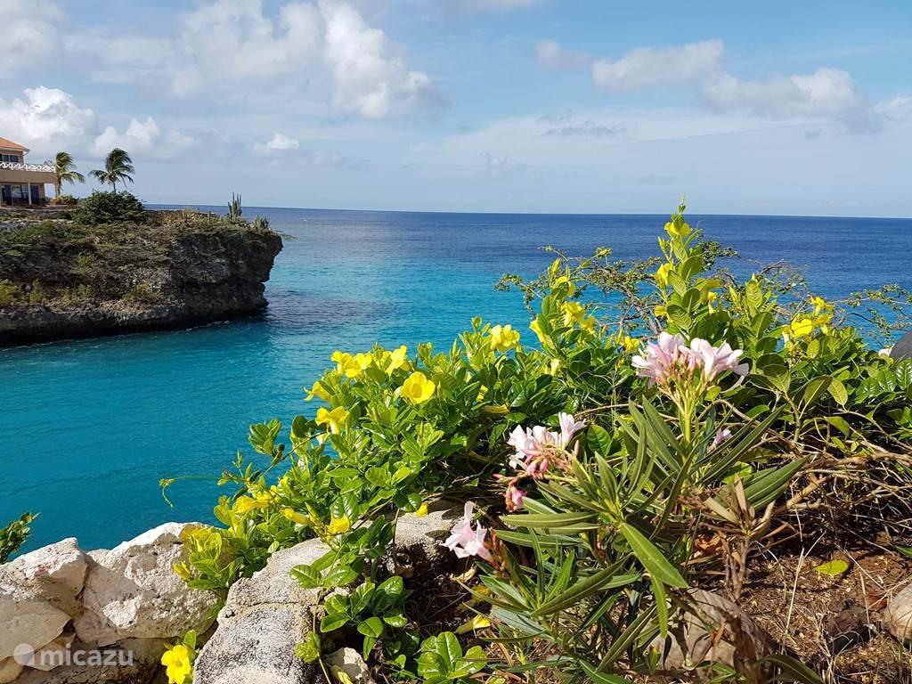 Mooi uitzicht vanaf het resort op de baai van Lagun en de Caribische Zee