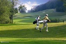 Golf area 3 km from House Hommert