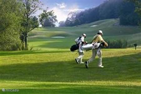 Golf area 3 km from House Hommert
