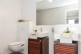 Badkamer behorend bij master bedroom.