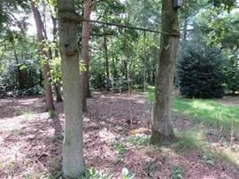 De stang waar de schommel aanhangt werd vroeger gebruikt om matten uit te kloppen, de stang is helemaal in de eiken gegroeid. Het lijkt alsof de stang is opgegeten door de bomen. Heen en weer.... Schommelen maarrrrrr!!!!!