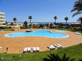 Het prachtige zwembad. Ruime terrassen, voldoende ligbedden en parasols, kinderbad en jacuzzi.