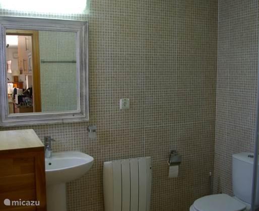 De badkamer bij de slaapkamer op de begane grond met douche en toilet en wastafel.