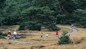 Natuurpark de Hoge Veluwe