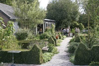 Marrys bloemen en kruidenhuis