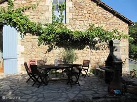 terras op zuiden met druivenranken, bbq en vuurpot