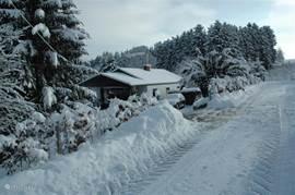 Straatkant in de winter.
