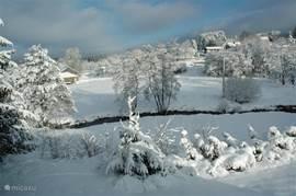 Winters zicht van op terras.