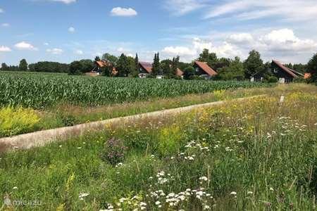 Vakantiehuis Nederland, Friesland, Appelscha vakantiehuis Ideale Vakantiewoning Appelscha