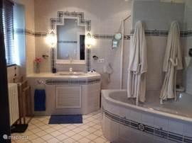 Badkamer met bad, aparte douche, toilette en urinoir.
