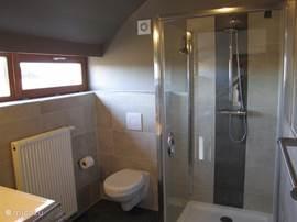 Badkamer 2 met douche,inbouwtoilet en wastafel