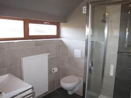 Badkamer 2 met douche, wc, wastafel
