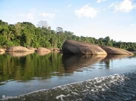 Het mooie binnenland van Suriname.