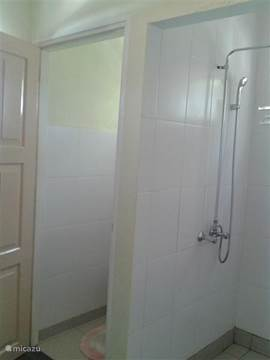 Shower and toilet.