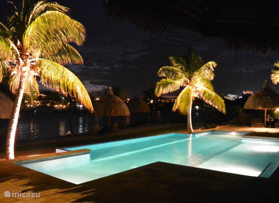 pool view by night
