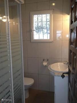 Badkamer voorzien van toilet, douche en wastafel.