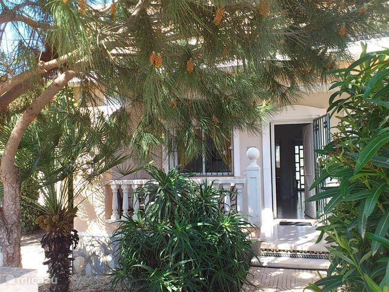 Droomhuis La House : Rent my dream house in benijófar costa blanca micazu