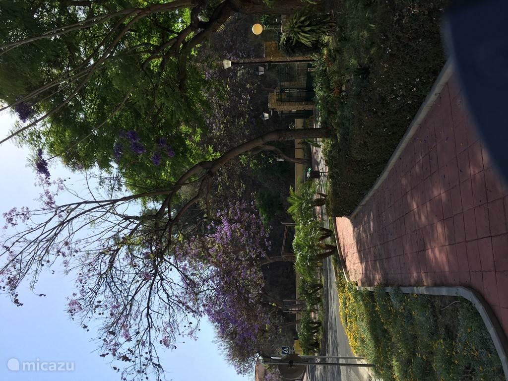 Ingang van de 'urbanisatie' met heerlijk geurende bloemen, planten en bomen