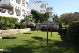 De tuin met parasols bij het zwembad om heerlijk te relaxen
