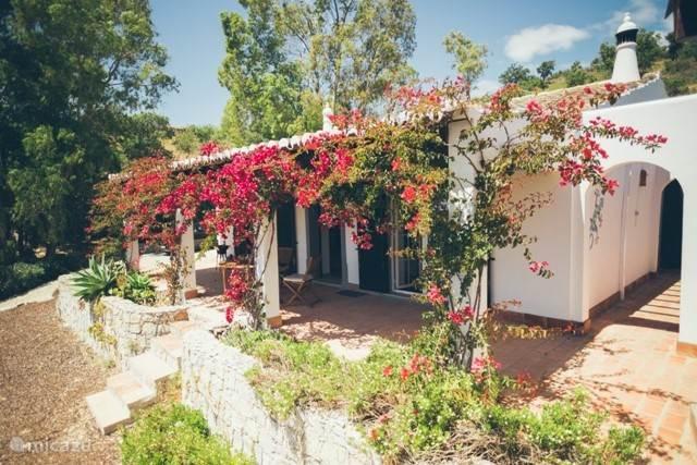 Vacation rental Portugal, Algarve, Tavira villa Villa Helder