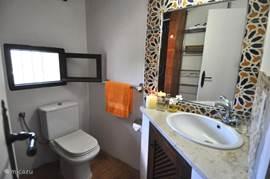 Kleurrijke douchekamer met toilet.