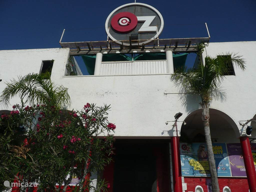 Torrevieja is naast een fantastische zon- en strandbestemming ook een bruisend uitgaansparadijs en claimt naar eigen zeggen de Parel van de Middellandse zee te zijn op het gebied van stappen. Discotheek 'Oz' (voormalige Pacha-discotheek) is de grote favoriet onder het jonge publiek!