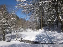 Het uitzicht aan de voorkant in de sneeuw. Rust en ruimte, maar toch in de bewoonde wereld.