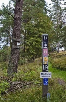 Wandelroutes, die tegenover de Villa beginnen, van een paar kilometer tot volledige dagtochten. Kaarten en routebeschrijvingen zijn aanwezig. Alle routes zijn goed aangegeven.