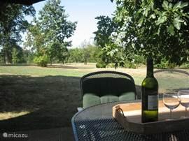 Vanaf het terras kijk je direct uit op het royale park. augustus/september valt er veel fruit van de bomen. als het fruit blijft liggen komen de reeën langs om het fruit op te eten. Een verrassing om dit in je eigen vakantiehuis mee te maken. Hier o.a. een grote tafel en acht stoelen en een paras